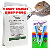 Exotic Nutrition Baby Squirrel Milk Replacer Kit - Formula + Feeding Syringes - Nursing Kit for Baby Squirrels, Rabbits, Opossums & Other Baby Animals