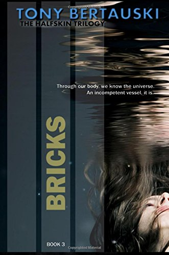 Download Bricks (Volume 3) pdf
