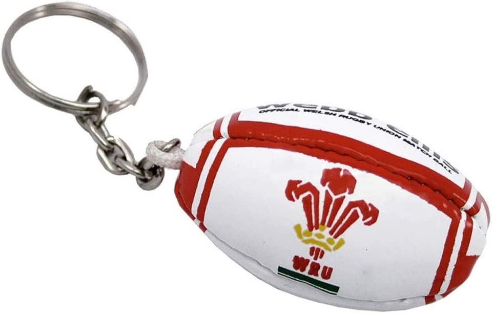 Webb Ellis Wales Rugby Ball Key Ring: Amazon.es: Deportes y aire libre