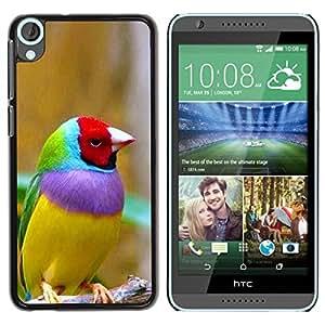 TopCaseStore / la caja del caucho duro de la cubierta de protección de la piel - Bird Ornithology Yellow - HTC Desire 820
