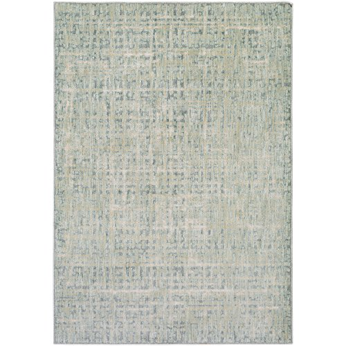 Fortunata Blue and Gray Modern Area Rug 8'10