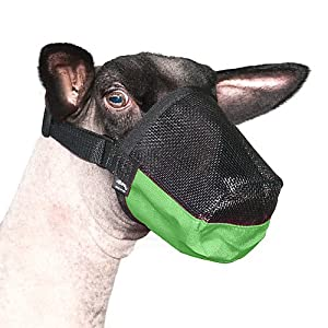 Weaver Leather Deluxe Adjustable Goat/Sheep Muzzle