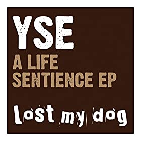 YSE - A Life Sentience