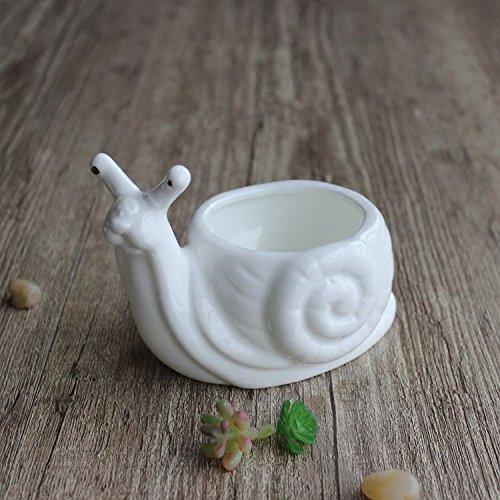 Youfui Cute Animal Succulent Planter Flower Pot Decor for Home Office Desk Turtle Snail