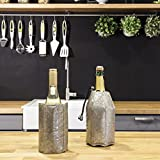 Vacu Vin Rapid Ice Wine and Champagne Cooler Set - Platinum