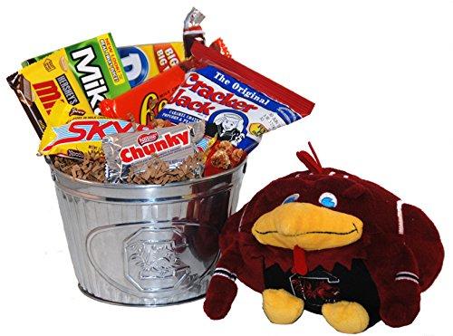 University of South Carolina Snack Bucket Gift Basket - Large