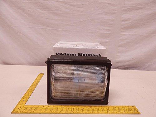 Day Brite WLP 100MMT-LP 100 W Wallpack Metal Halide Multi Tap w/Lamp T79869