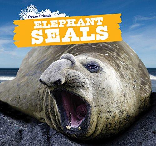 Elephant Seals (Ocean Friends)