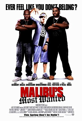Pop Culture Graphics Malibu's Most Wanted Poster 27x40 Jamie Kennedy Taye Diggs Anthony Anderson