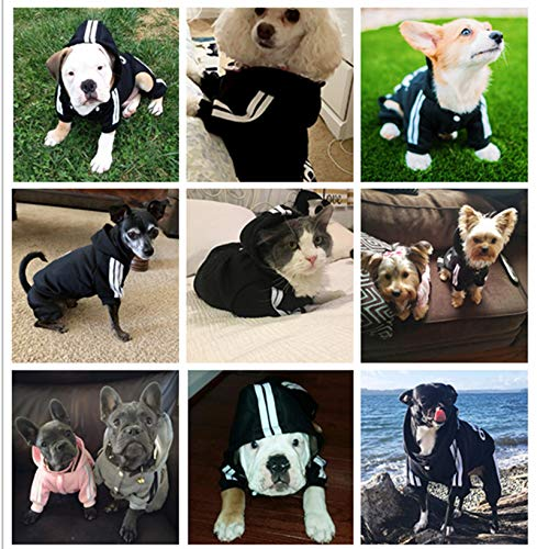 QuaQuaPet Dog Hoodie Warm Sweater Coat Sweatshirt Clothes Costume Apparel Relieve Oneself with Open Pants for Pets Dogs Puppy Cats
