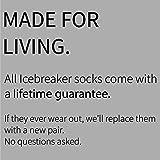 Icebreaker Women's Multisport Light Micro Socks