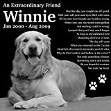 Personalized Pet Dog Cat Memorial 12''x12'' Engraved Black Granite Grave Marker Head Stone Plaque WIN1