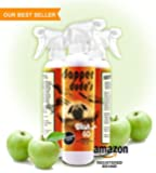 Dog Shampoo - Natural, Instant Cleaning Mist, Bathless - Grain Free -Vitamin Rich, Ph Balanced, No-Mess Formula. Detergent Free Botanical Extracts Clean & Freshen-Up Pets Naturally. Sunshine Jack Natural Pet Care 16 oz