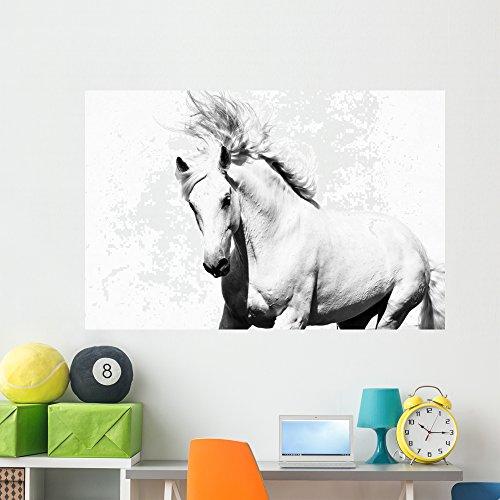 Wallmonkeys White Arabian Horse Stallion on the White Wall Decal Peel and Stick Graphic WM270046 (60 in W x 40 in H) by Wallmonkeys