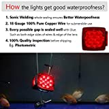 CZC AUTO 12V Submersible LED Trailer Tail Light Kit for Under 80 Inch Trailer Boat Utility Trailer Waterproof