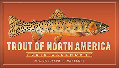amazon trout of north america 2019 calendar joseph r tomelleri