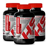 Best fat burner energy - HOODIA GORDONII EXTRACT (2000Mg) - Natural appetite suppressant for weight control - 3 Bottle 180 Tablets