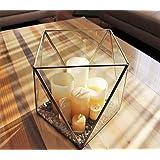 Maceta Terrarium Caja de Hadas Florero Geométrico Decorativa Suculentas Orquídeas Terrarium Centro de Mesa Vidrio Plata (26cm Altura)