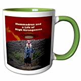 3dRose Sandy Mertens Writers World - Hummadruz and a Life of High Strangeness - 11oz Two-Tone Green Mug (mug_26363_7)