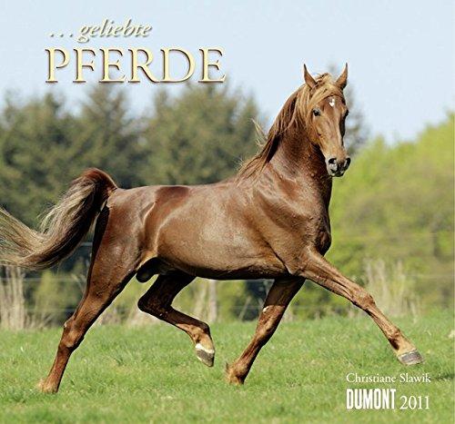 . geliebte Pferde Kalender 2011