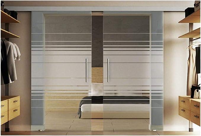 Correderas de cristal de la puerta con incluido dos discos en cada 102,5 x 205 cm en vidrio templado-vidrio esmerilado Horizont-diseño (H) Levidor EasySlide-sistema completo. Ejecución de rieles y barras de asas,