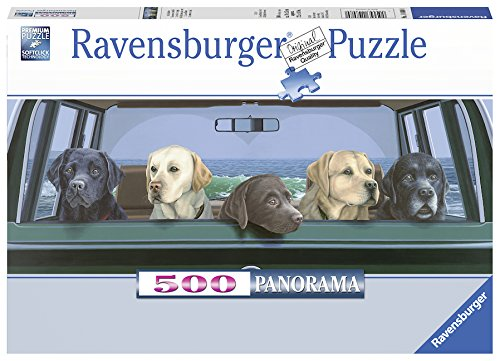 Panoramic 500 Piece Puzzle - Ravensburger All Labs Matter Panoramic Puzzle (500 Piece), Multicolor