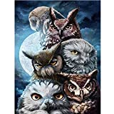 5D Diamond Painting, Full Drill Owl Crystals Embroidery DIY Resin Cross Stitch Kit Home Decor Craft by Number Kits (Owl, 30x40cm)