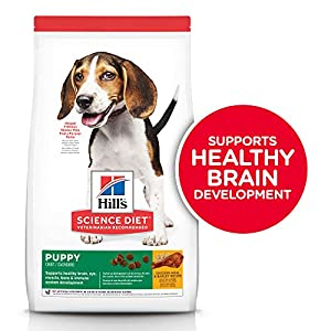 Hill's Science Diet Dry Dog Food, Puppy, Chicken Meal & Barley Recipe, 30 lb Bag