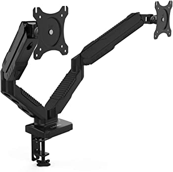 Langria Dual Monitor Stand