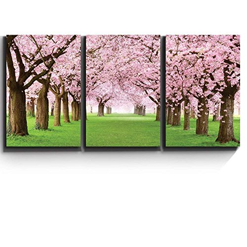 Print Contemporary Art Wall Decor Beautiful Cherry Blossom Trees Artwork Wood Stretcher Bars x3 Panels