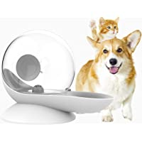 Sorlakar - Dispensador de agua para perros, 2,8 l de recambio automático, sin derrames para gatos, perros (gris)