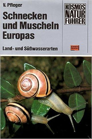 Schnecken und Muscheln Europas. Land- und Süßwasserarten: Amazon.de ...