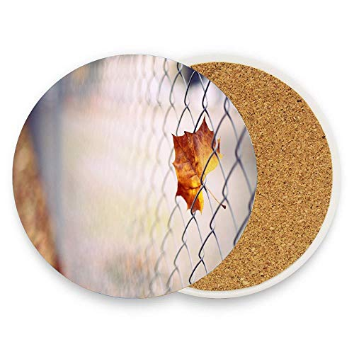 BeautyToiletLidCoverABC Amber leaf caught in wire mesh - macro Autumn Drinks Absorbent Coaster Ceramic Stone Coffee Mat With Cork Back Mugs and Cups Mat Pack Of 1
