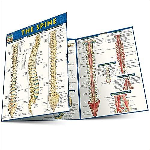 The Spine (Quick Study Academic)