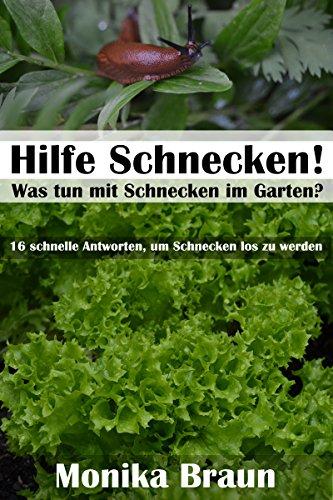 Hilfe Schnecken Was Tun Mit Schnecken Im Garten 16 Schnelle