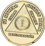 1 A/1o AA Medall/3n Viruta En Espa/1ol One Year Medallion Spanish Language Serenity Prayer