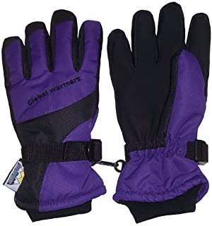 Global Warmers Adults N'Ice Caps Thinsulate and Waterproof Colorblocked Ski Gloves (B00F23WDF0) | Amazon price tracker / tracking, Amazon price history charts, Amazon price watches, Amazon price drop alerts