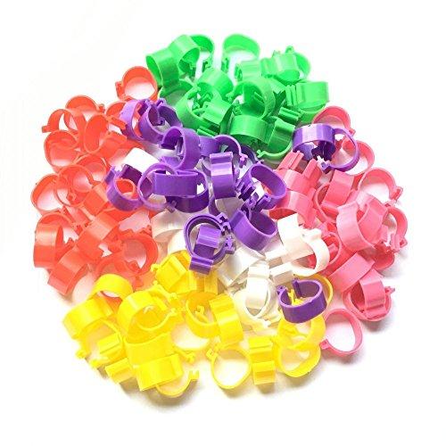 120pcs-poultry-leg-bands-bird-chicks-ducks-clip-on-rings-6-colors