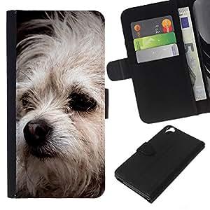 Bolognese Mutt Dog White Fur Canine - la tarjeta de Crédito Slots PU Funda de cuero Monedero caso cubierta de piel HTC Desire 820