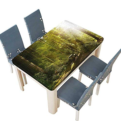 Washington Nationals Round Clock - PINAFORE Printed Fabric Tablecloth Rainforest with Wood Bench in Olympic National Park Washington USA Photo Green Yellow Washable Polyester W37.5 x L76.5 INCH (Elastic Edge)