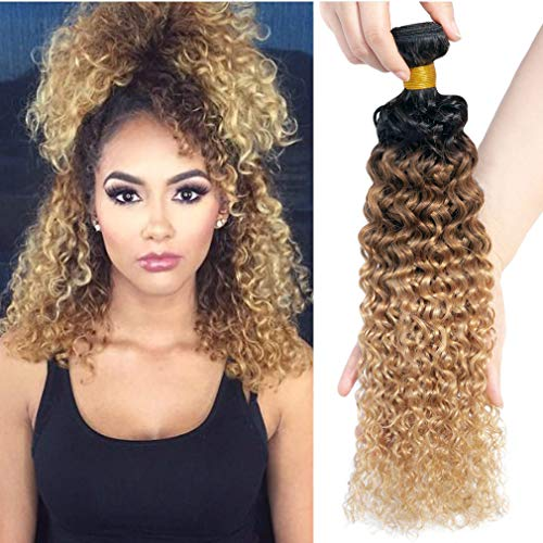 (10A Kinkys Curly Human Hair Weave Ombre Curly Hair Bundles 3 Bundles(T1B/30/27,10