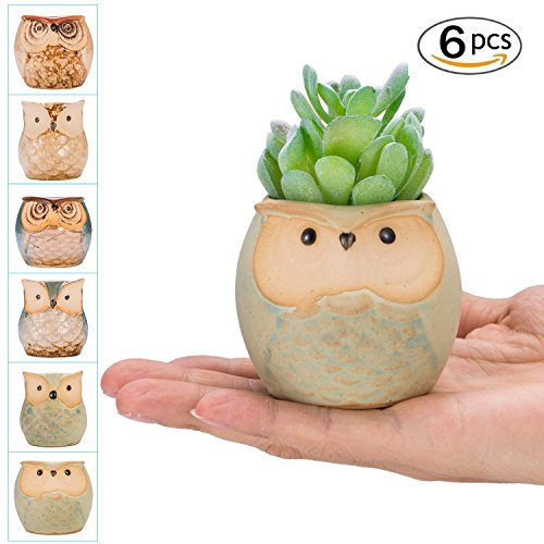 occer 6 Pcs 2.5 Inches Mini Owl Pots Succulents Bonsai Plant pots,Cute Flower Cactus Ceramic Pot,Container Planter With a Hole,Perfect For Home Decoration,Office desk,Kitchen Counter, Best Gift Idea by occer