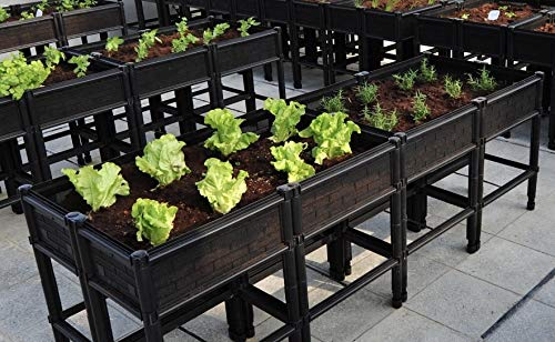 City Farmer USA Large Raised Elevated Garden Bed amp Planter