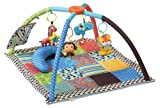 Baby : Infantino Twist and Fold Activity Gym, Vintage Boy
