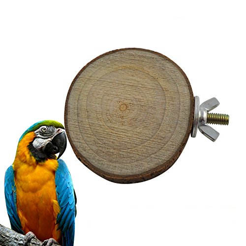 Nature Wood Bird Cage Accessories Wooden Parrot Perches Stand Platform Squirrel Hamster springboard Pet Parakeet Budgie Hanging