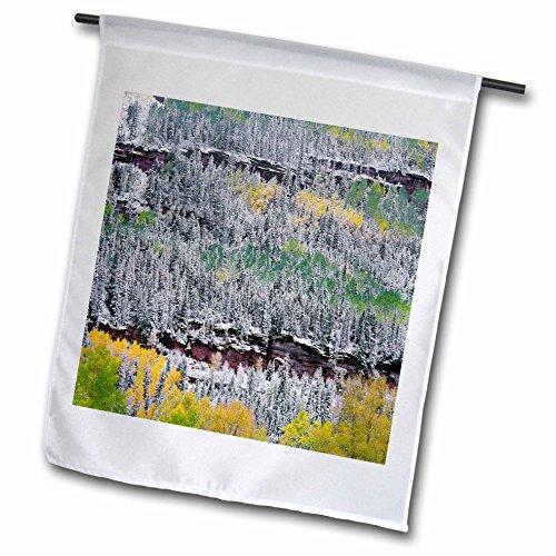 - 3dRose Danita Delimont - Trees - USA, Colorado, Uncompahgre Forest, San Juan Range, Fall snowstorm. - 12 x 18 inch Garden Flag (fl_259105_1)