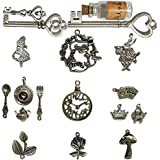 N'joy 18-Piece Alice in Wonderland Fairy Tales Tea Party Steampunk Victorian Necklace Bracelet ...