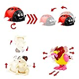 20 Pack Wind up Toys Assorted Mini Toy Animal for