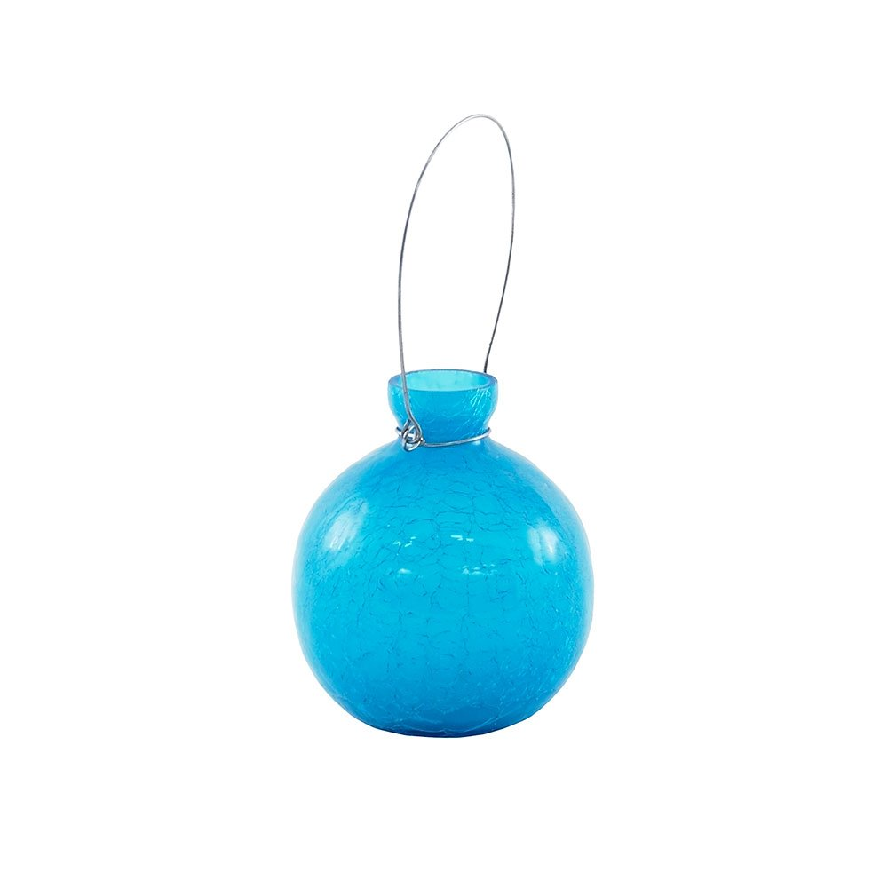 Achla Designs Goblet Glass Rooting Flower Vase, Teal by Achla