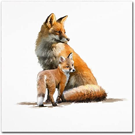 Amazon Com Fox By The Macneil Studio 18x18 Inch Canvas Wall Art Posters Prints